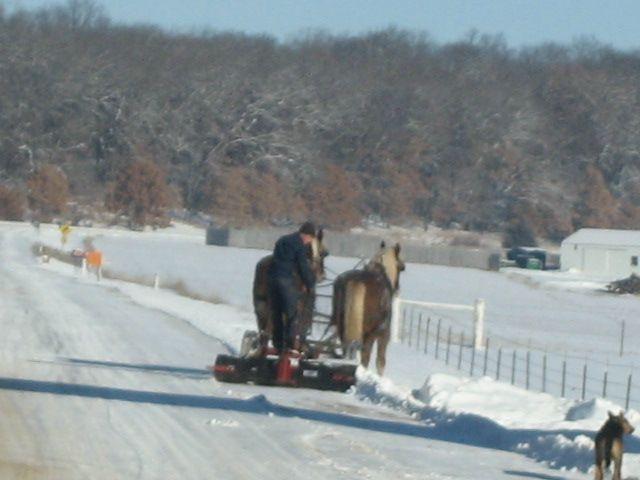 Amish Snowplow Snow Plow Snow Let It Snow