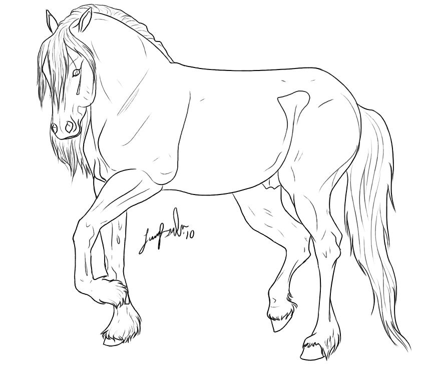 Friesian marepng 841750 Color Horses Donkeys