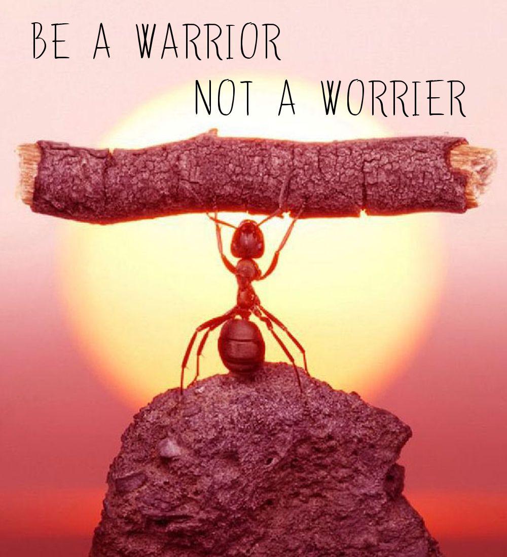 Be a warrior not a worrier  #healingquotes  #wednesdaywisdom