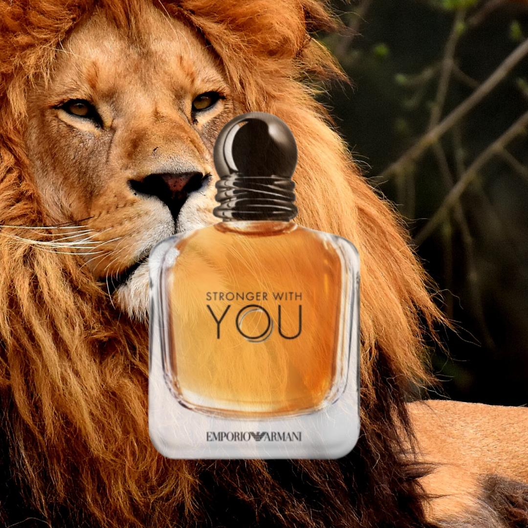 عطر سترونج وذ يو الرجالي Men Perfume Perfume Men