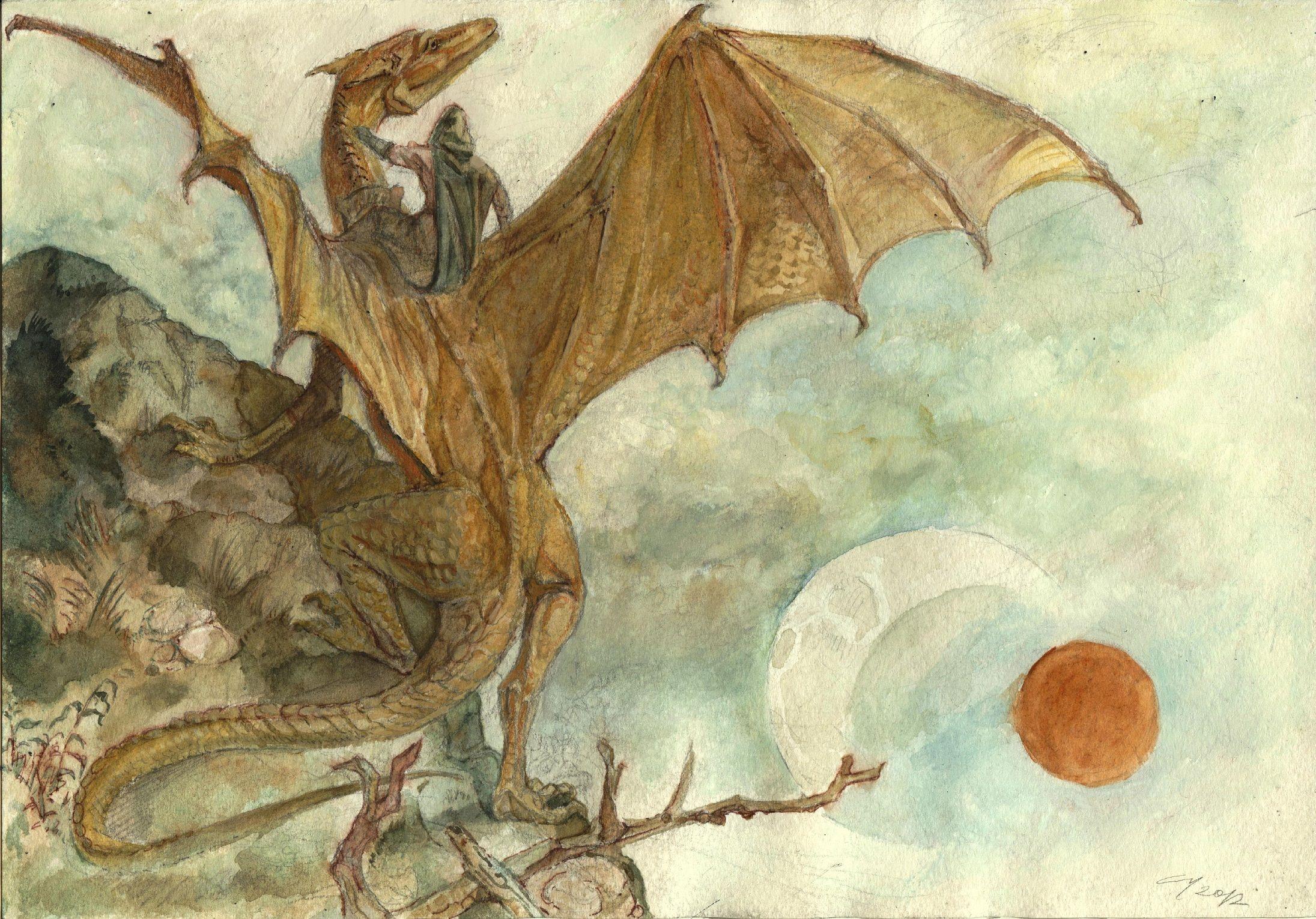Image result for pern dragon illustration