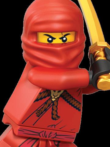 Pin von daniel druhm auf steine pinterest geburtstag for Kinderzimmer ninjago