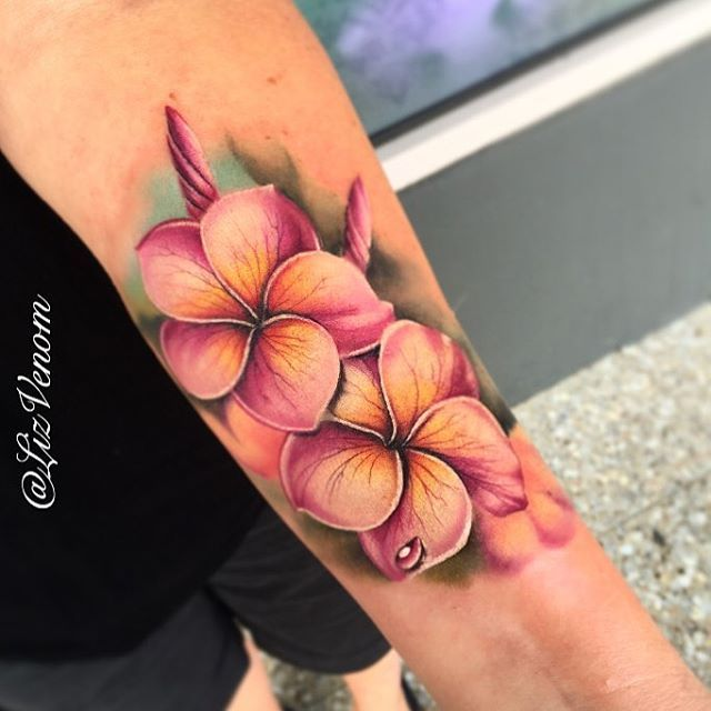 Related Image Plumeria Tattoo Frangipani Tattoo Hibiscus Tattoo