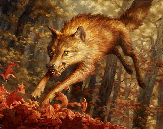 Resultado de imagen de Young Wolf mtg