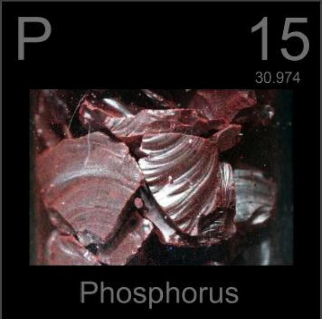 The three most common forms of phosphorus rock are red, white, or - new periodic table phosphorus atomic mass