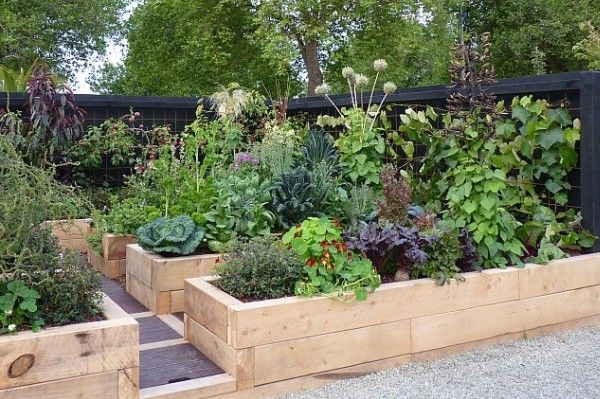 Beautiful Vegetable Gardens PLUS Design Tips and Ideas ...