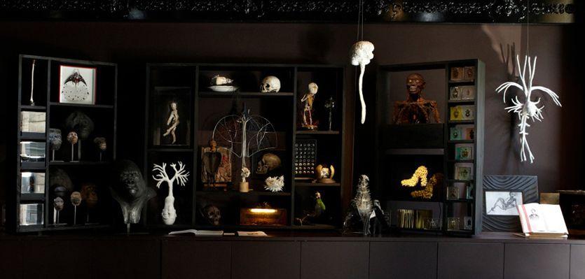 cabinet de curiosit s shop ideas pinterest cabinet de curiosit curiosit s et jeu. Black Bedroom Furniture Sets. Home Design Ideas