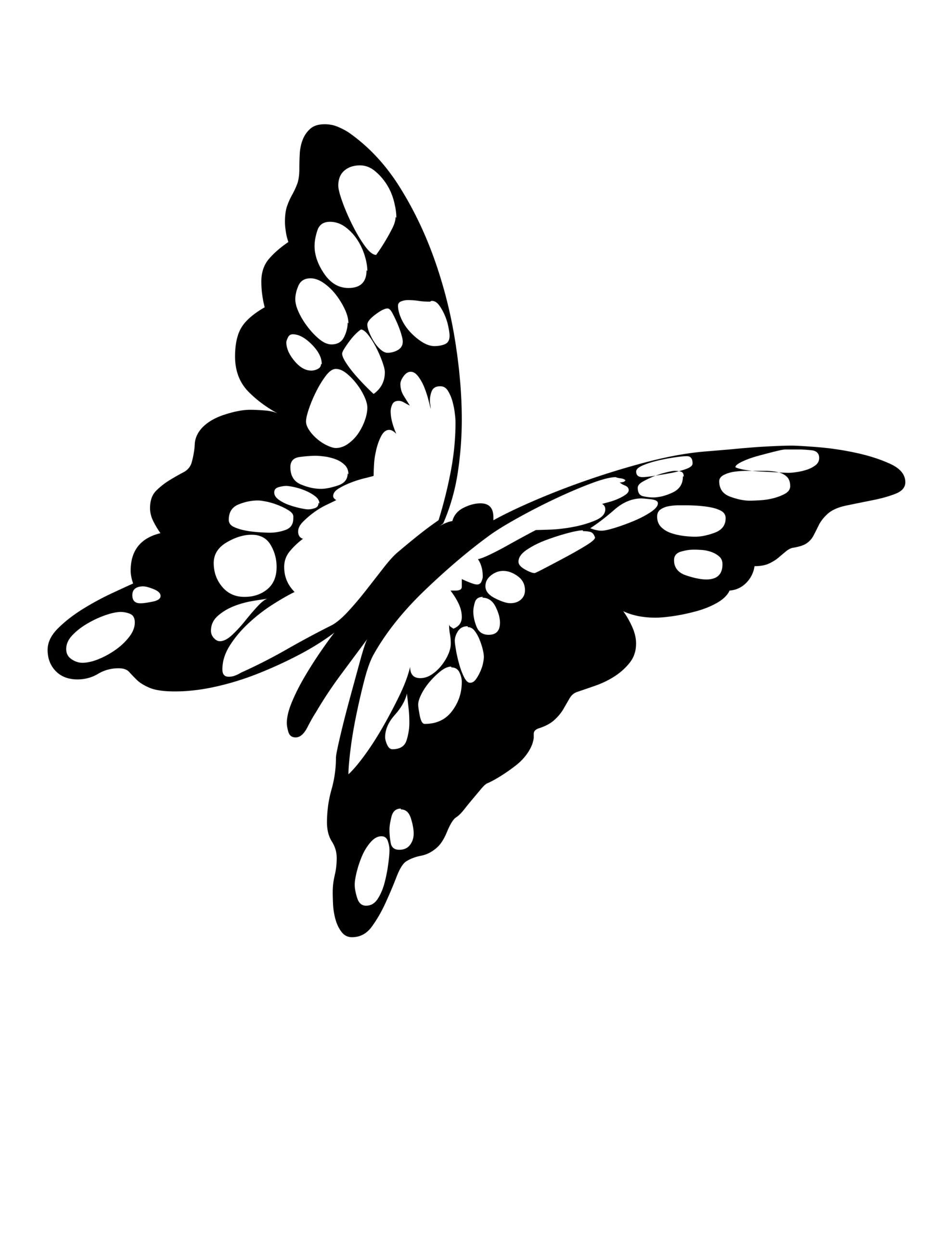 Monarch Butterfly Life Cycle Coloring Page Youngandtae Com Butterfly Photos Butterfly Coloring Page Coloring Pages [ 2560 x 1978 Pixel ]