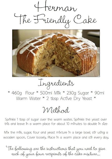 South your mouth: friendship fruit cake {plus starter recipe}.