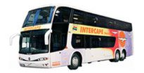 Buy Greyhound, Translux, City to City, Citiliner, InterCape or Roadlink bus tickets in-store