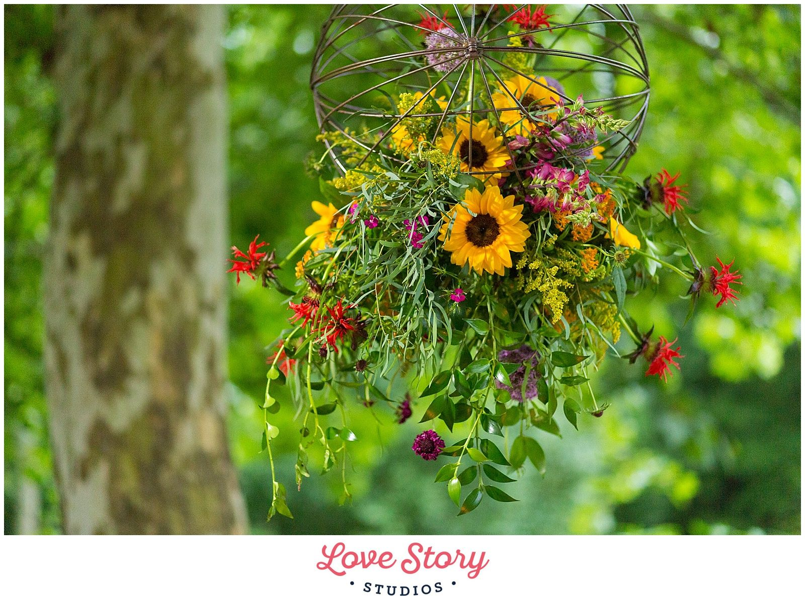 Copyright Love Story Studios www.lovestorystudiosnj.com Boho Themed Wedding South Jersey Wedding Photography A Garden Party Florist Your Day Your Way Hair and Makeup Sunflowers Floral Chandelier