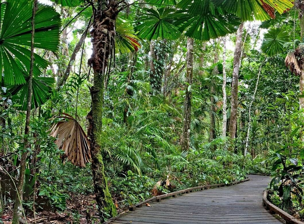 Tick off the things on your Bucket List sooner with this awesome deal.  Sun it up on the Great Barrier Reef... 6 days and 5 nights at Pacific Hotel Cairns Australia. 5 breakfasts 3 lunches and 1 dinner. Visit Mossman Gorge; includes transportation. Daintree River Cruise; includes transportation. Dreamtime Walk; includes transportation.  Ocean Spirit Cruise on the Great Barrier Reef; includes transportation. Visit Hartley's Crocodile Adventures; includes transportation. What more could you…