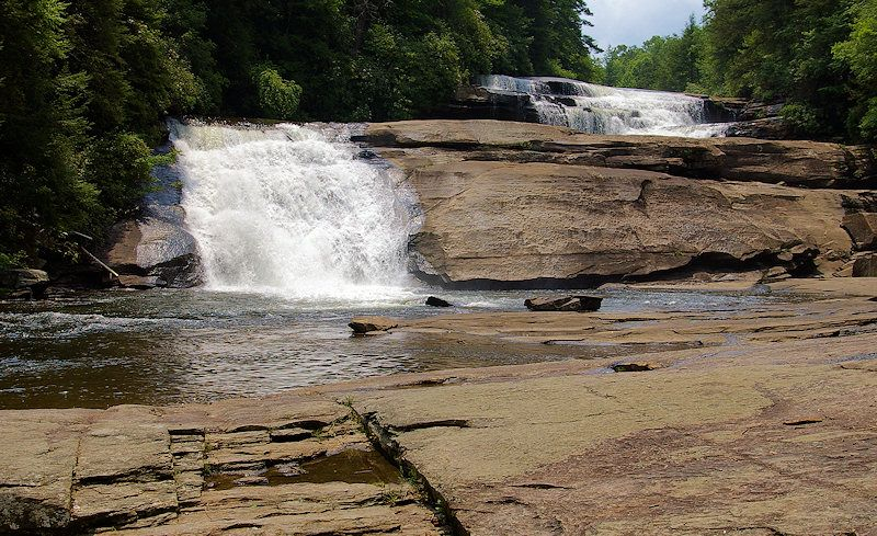 Hunger Games Movie Film Locations | Dupont state forest, Filming locations,  State forest