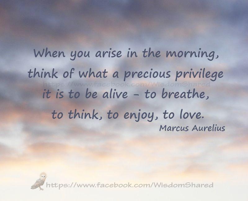 #Marcus Aurelius, #Quote #words