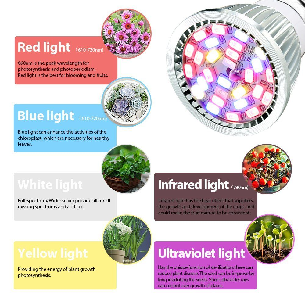 Grow Light Led Grow Plant Light Bulb Utterbest Grow Lights Full Spectrum Grow Lamp For Hydroponic Plants Hydroponic Plants Plant Lighting Planting Succulents