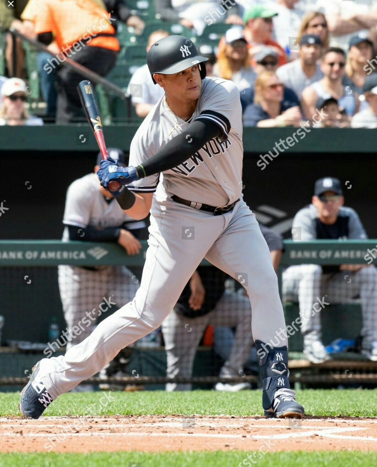 Gio Urshela New York Yankees Baseball Yankees