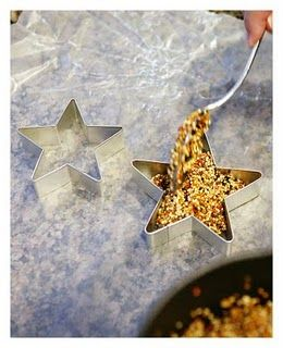 Bird feeders - little stars hanging from trees all winter long....love this.