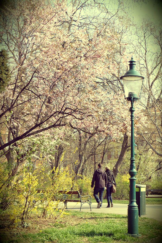 Walking in Stadpark Vienna
