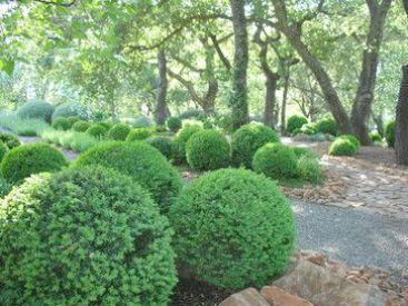 Landscape Gardening Jobs what Landscape Gardening Jobs ...