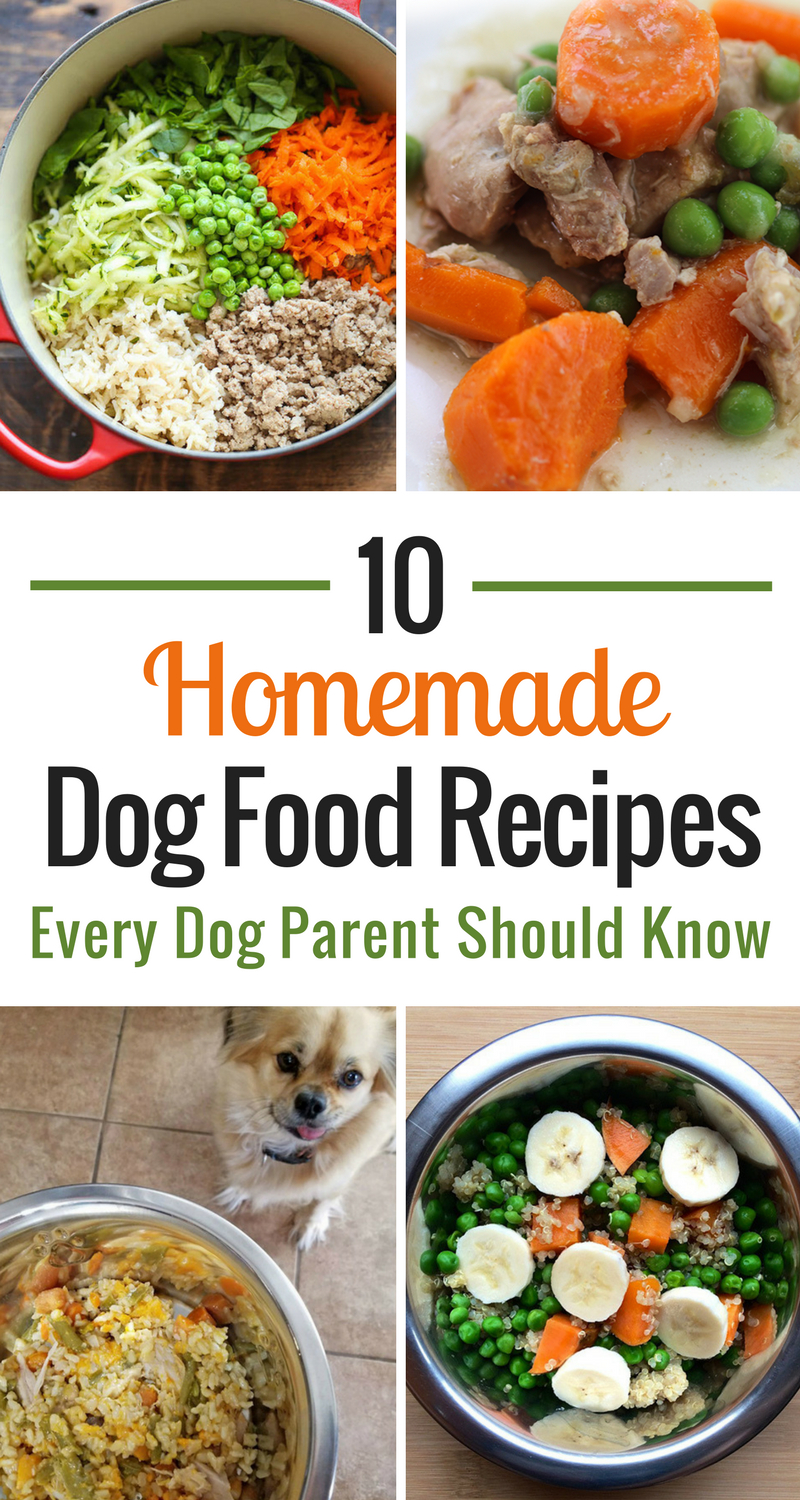 10 Homemade Dog Food Recipes Every Dog Parent Should Know