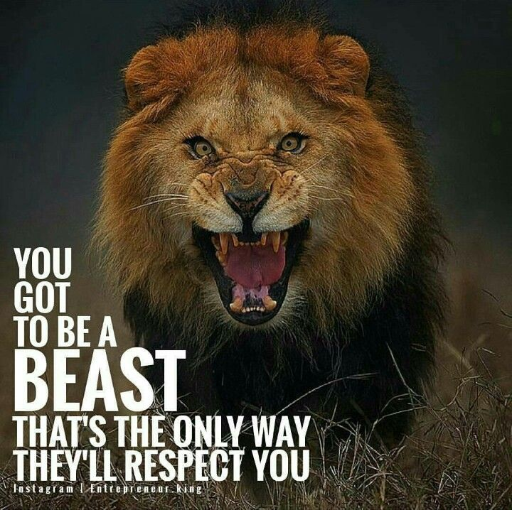 You Got To Be A Beast Thats The Only Way Theyll Respect You
