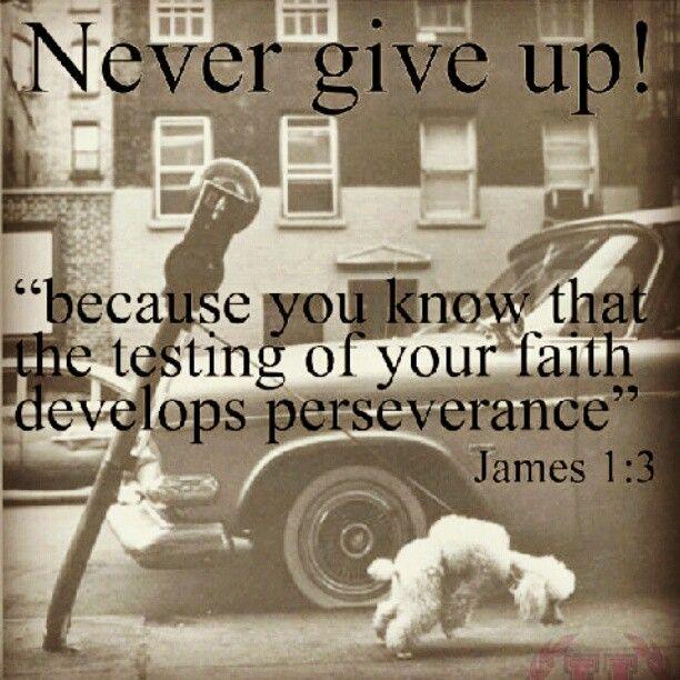 Bible Verses About Determination: Encouraging Bible Verses On Pinterest