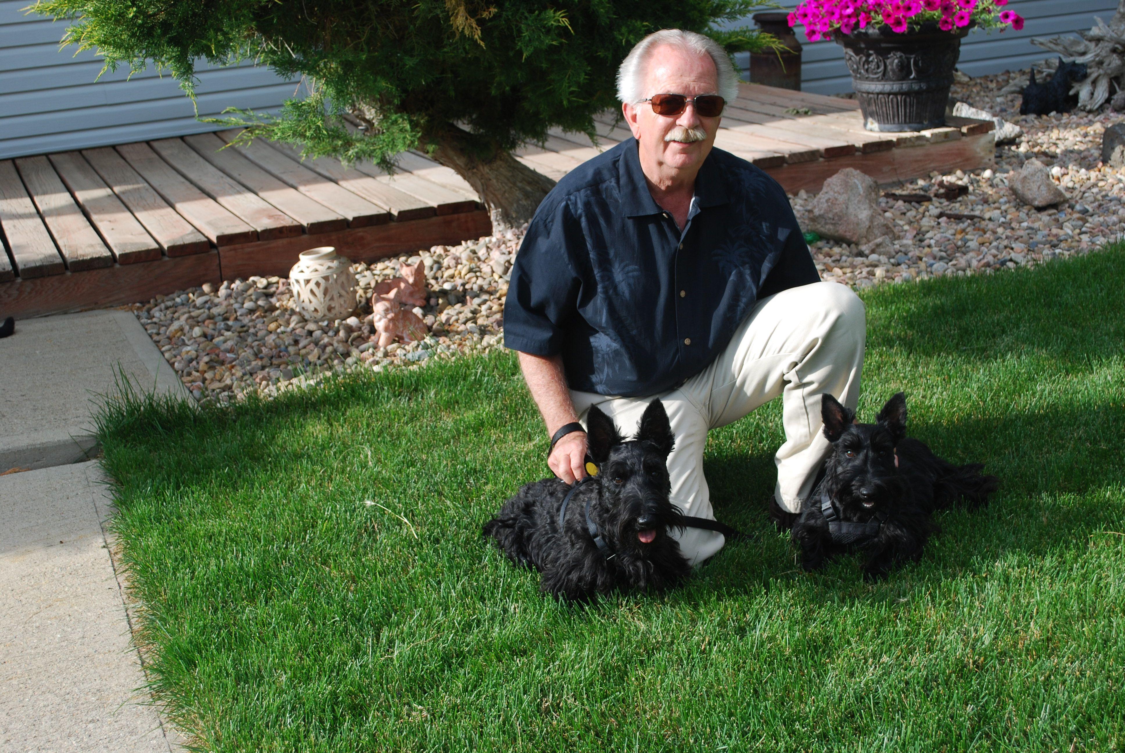 Scottish Terriers For Sale Scottish Terrier Breeder in