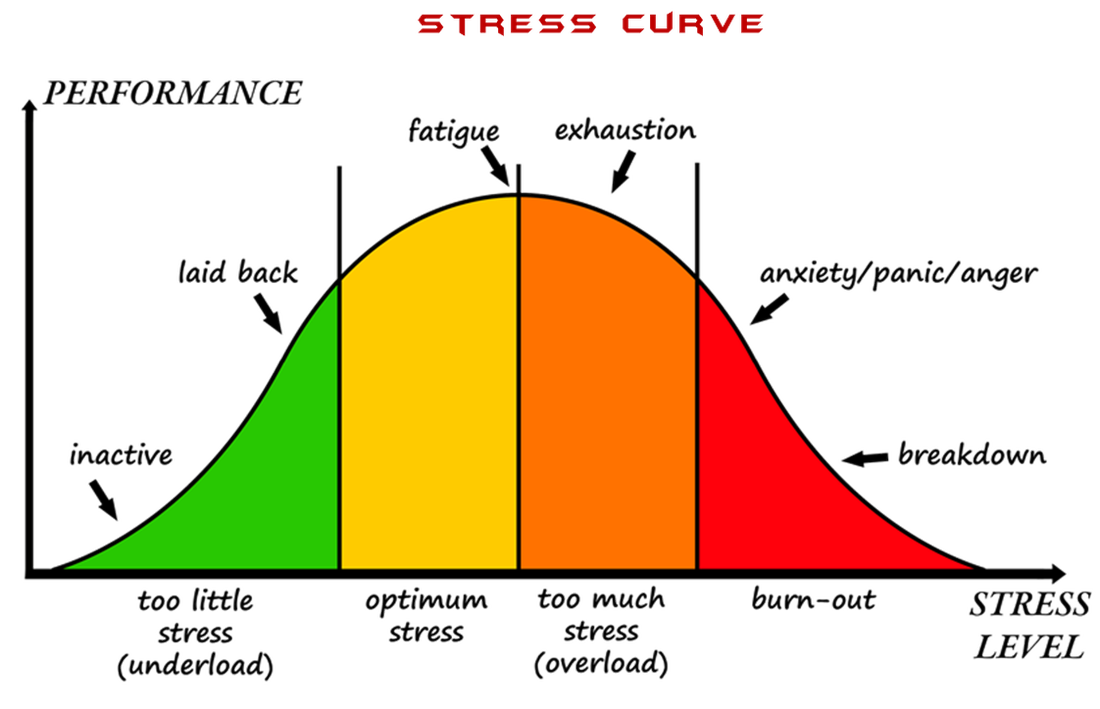 phases of the stress curve. graphic representation of the 3 parts, Skeleton