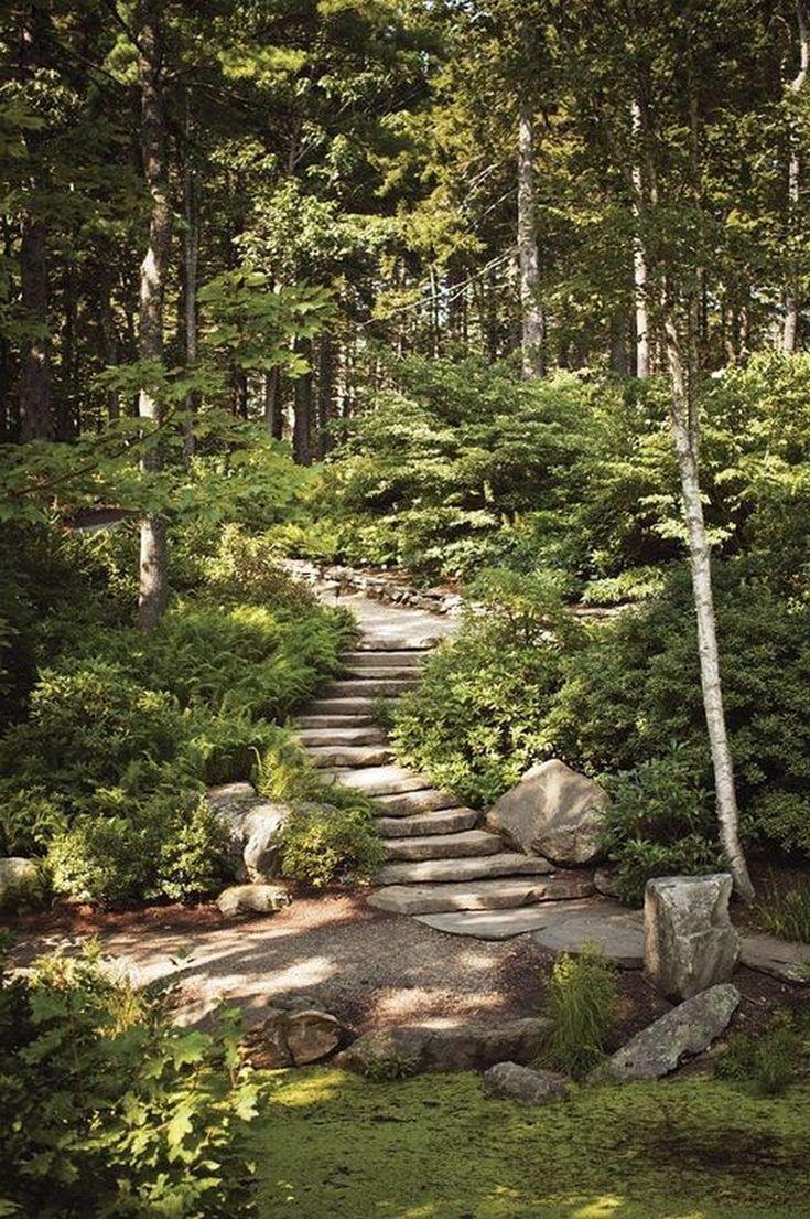 Photo of woodland garden paths Vines#garden #paths #vines #woodland