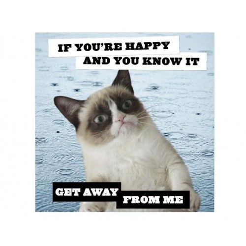 If You Re Happy And You Know It Get Away From Me Grumpy Cat