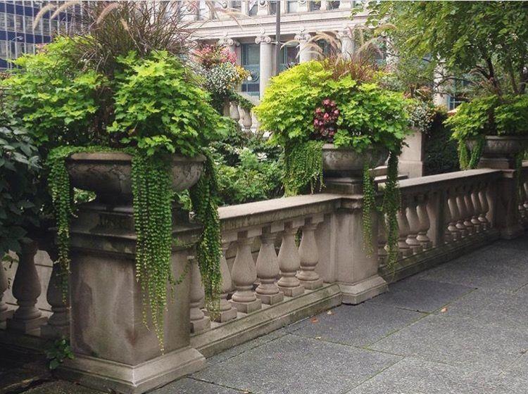 stone | lush planters