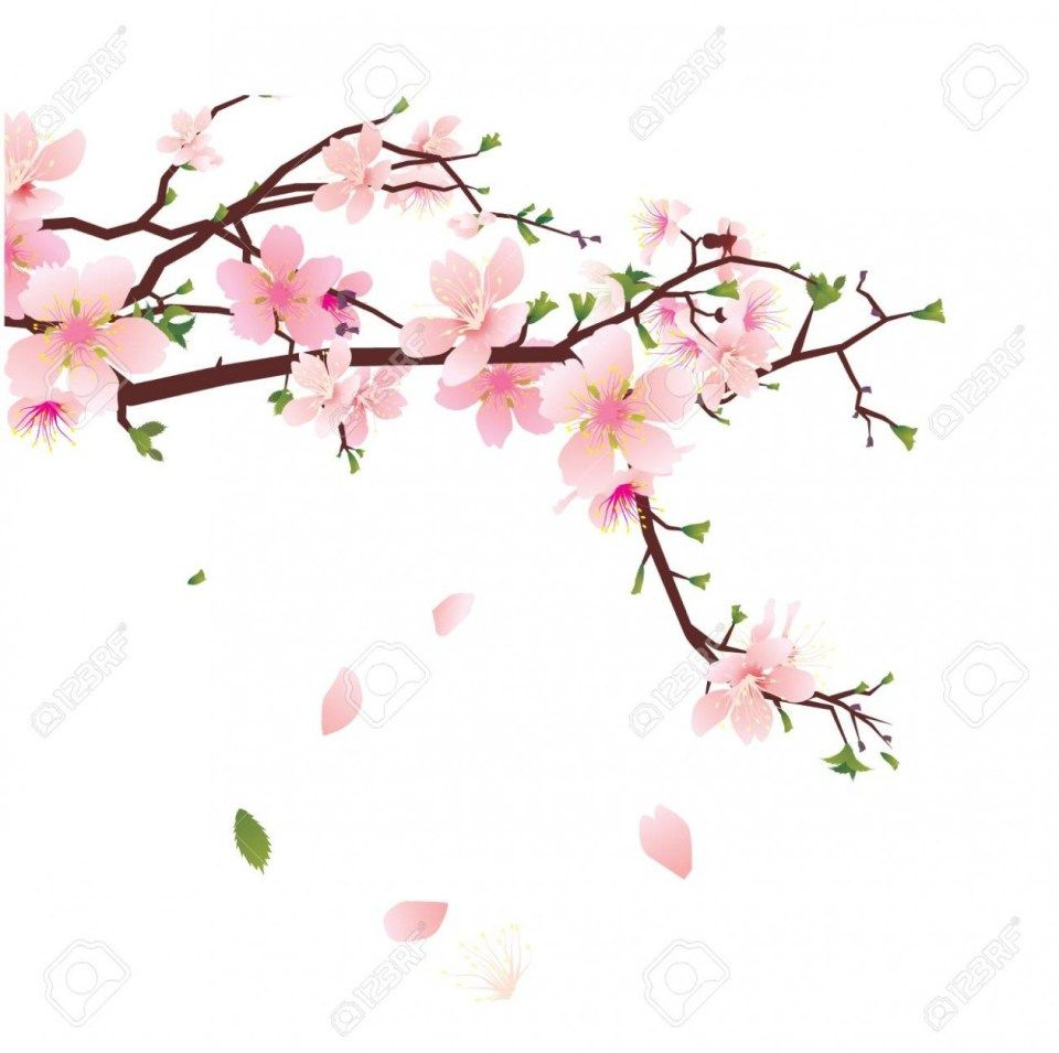 How You Can Attend Japanese Flower Background With Minimal Budget