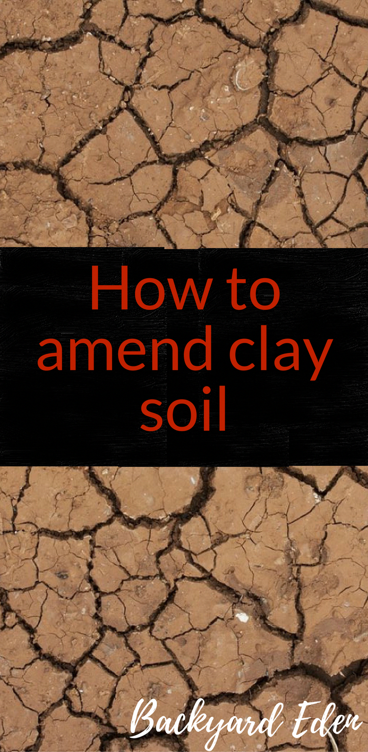 How to amend clay soil | Soil conditioning |Compost | Organic Gardening | Organi…
