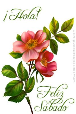 Feliz Sábado Mensajes De Feliz Sabado Imagenes De Feliz Sabado Feliz Sábado