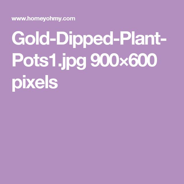 Gold-Dipped-Plant-Pots1.jpg 900×600 pixels