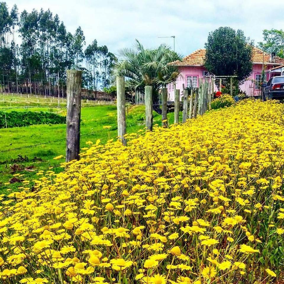 Agronômica, Santa Catarina, Brasil
