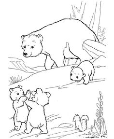 Bear In The Woods Coloring Pages Google Search Bear Coloring Pages Polar Bear Coloring Page Polar Bear Color