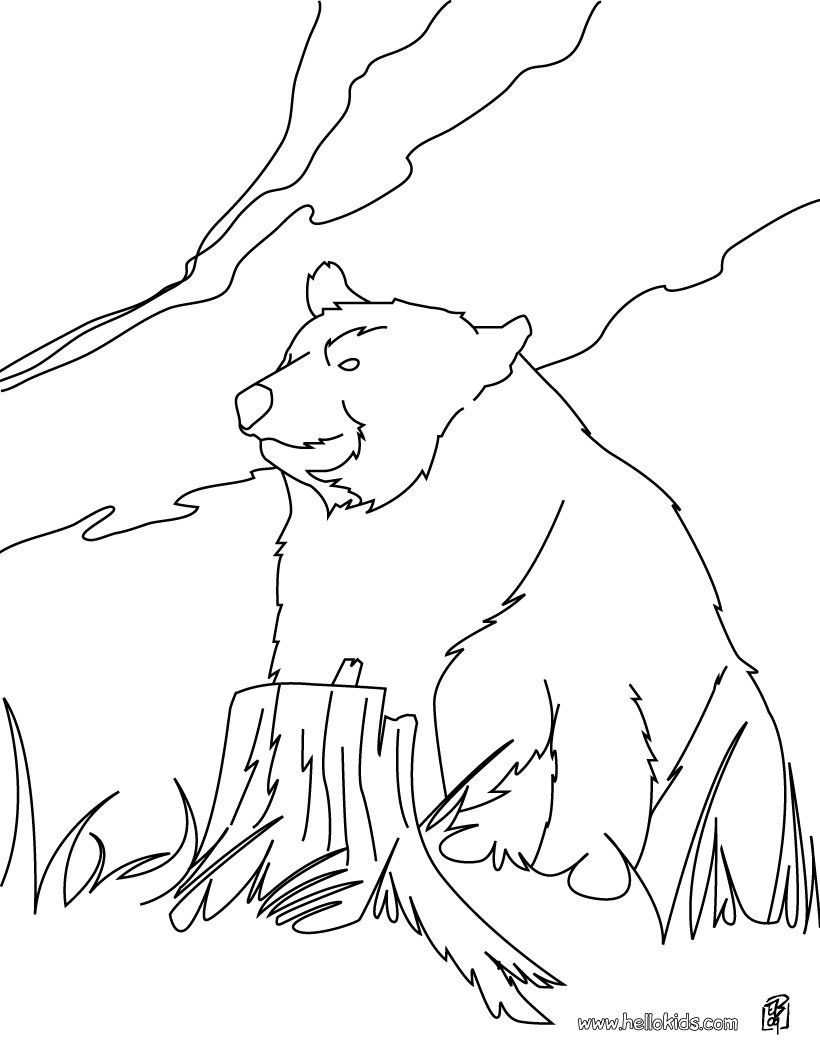 Kodiak Bear Coloring Page More Forest Animals Coloring Sheets On
