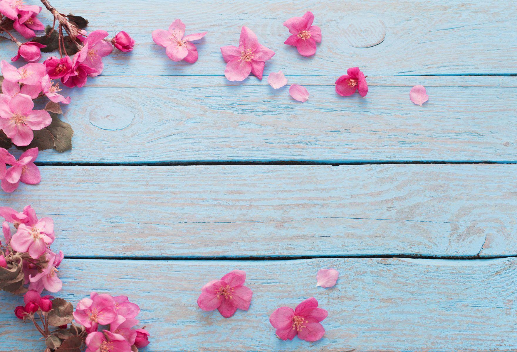 Fondos De Pantalla Madera Hd Vintage Para Fondo Celular En: Wood Backdrops Wooden Backdrop Flower Backgrounds Blue
