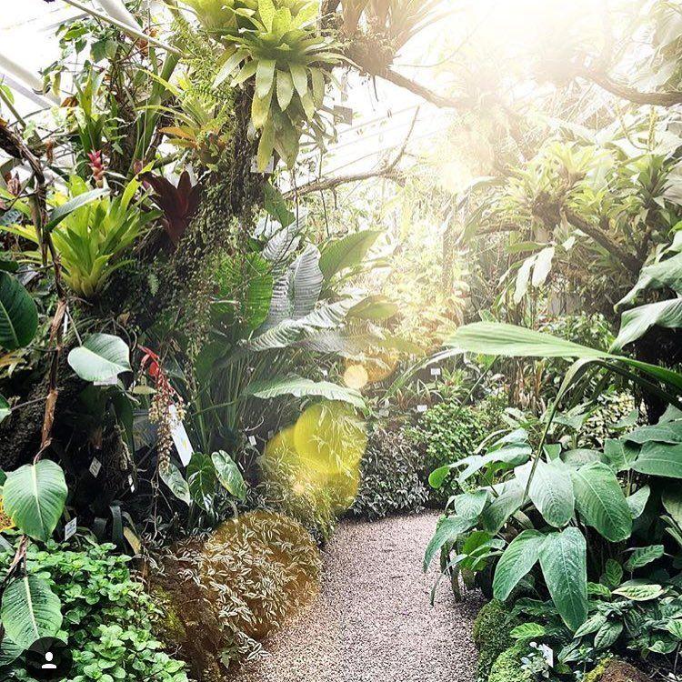 Inside The Magical Botanischer Garten München Nymphenburg In Bavaria