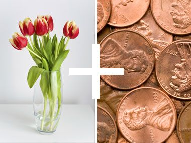 how to make flowers last longer 8 pro tricks copper penny cut flowers and pennies. Black Bedroom Furniture Sets. Home Design Ideas