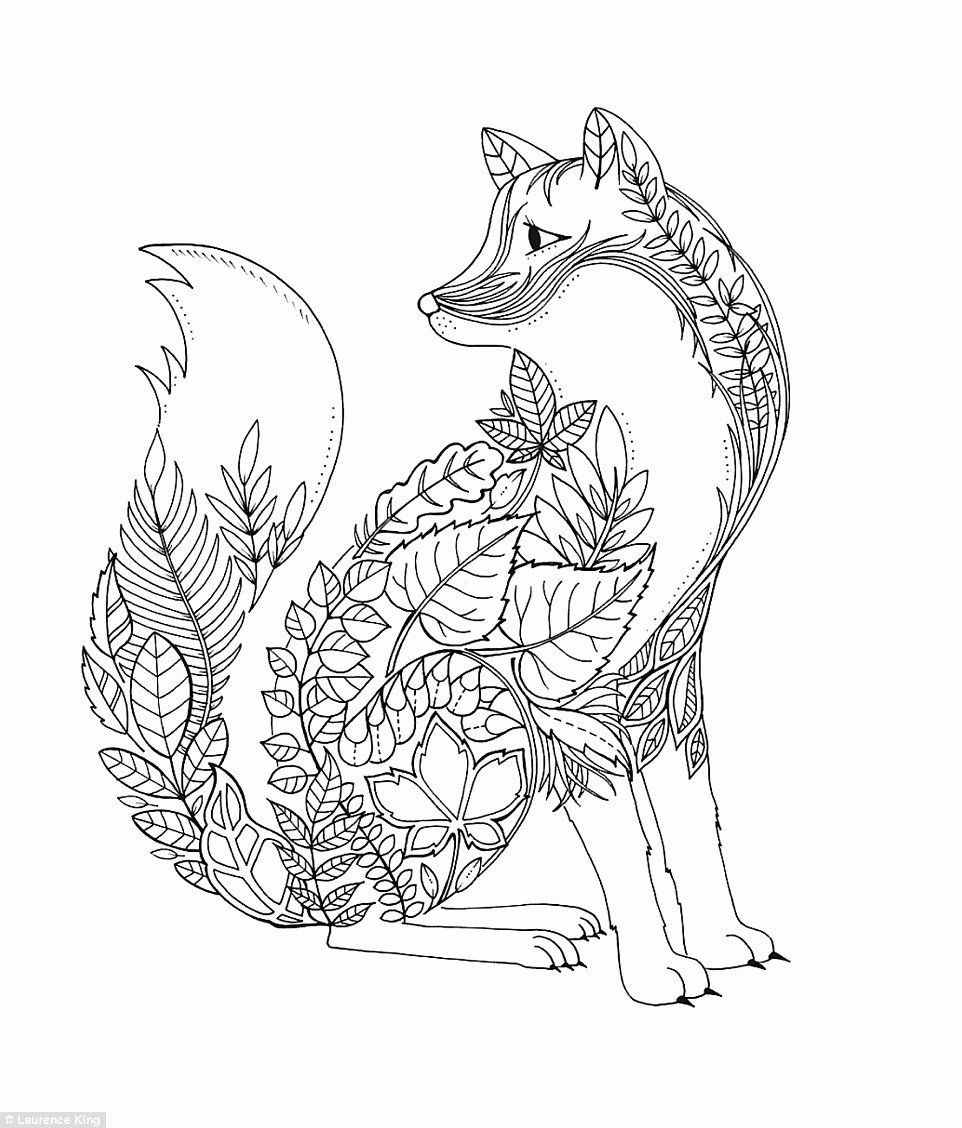 Secerct Garden Drawing Book In 2020 Fox Coloring Page Enchanted Forest Coloring Book Forest Coloring Book