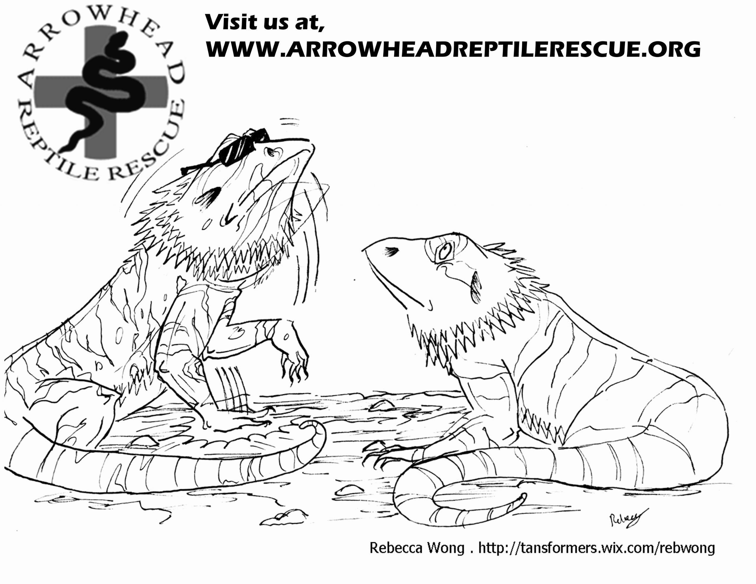 Bearded Dragon Coloring Page Unique Coloring Pages Bearded