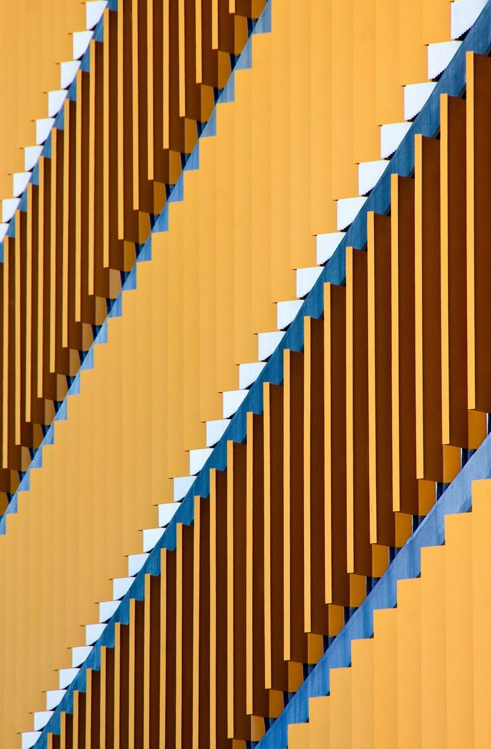 1X - Patterns in Architecture by Jacqueline Hammer
