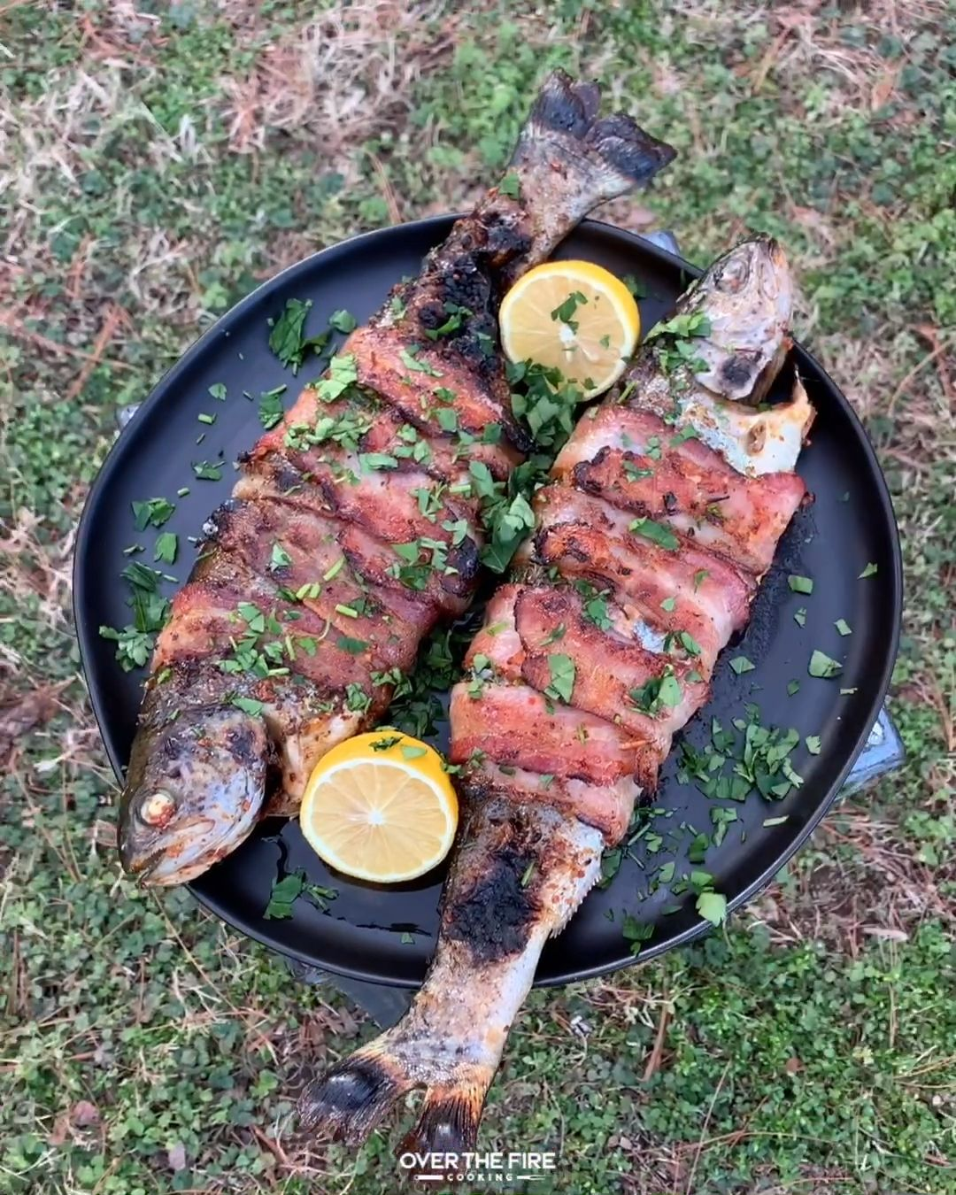 Bacon Wrapped Trout Recipe!