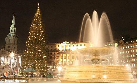 Londons Christmas Tree In Trafalgar Square Is Donated Each Year By Which Country.Trafalgar Square Christmas Tree Gareth Johnson Google