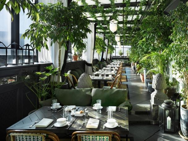 Biophilia in a cafe setting Gramercy park hotel, Terrace
