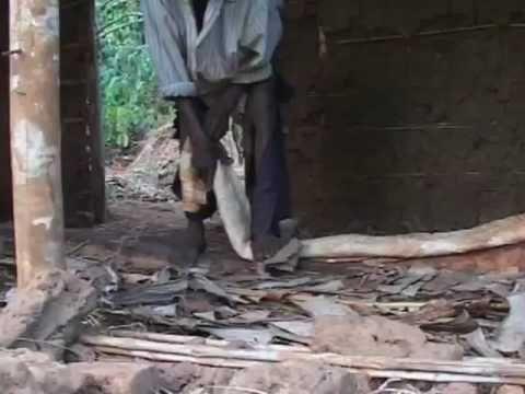 La fabricación de tejidos de corteza en Uganda