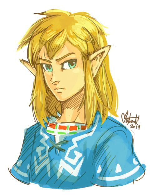 Link With His Hair Down Wiiu Calamity Ganon Legend Of
