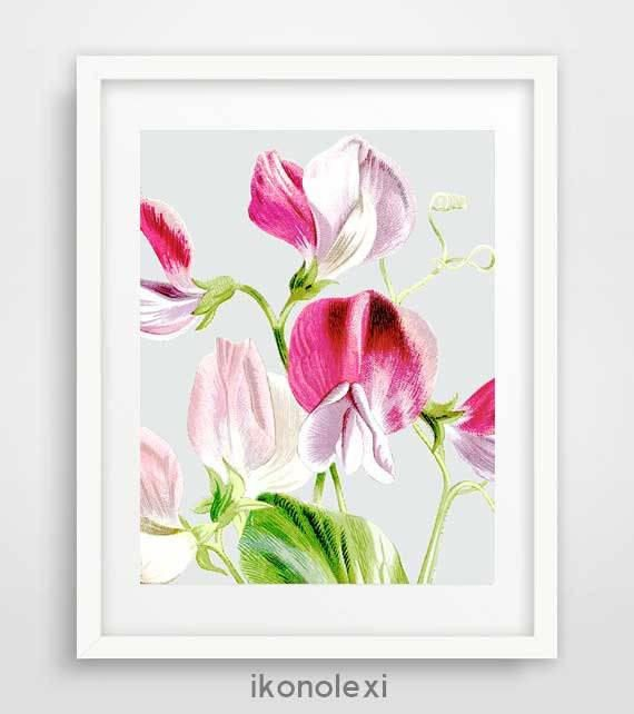 Sweet Pea Flower Art Posters Vintage Flowers Blumen Poster Bouquet Wall Pictures Best Birthday Gifts Decorative